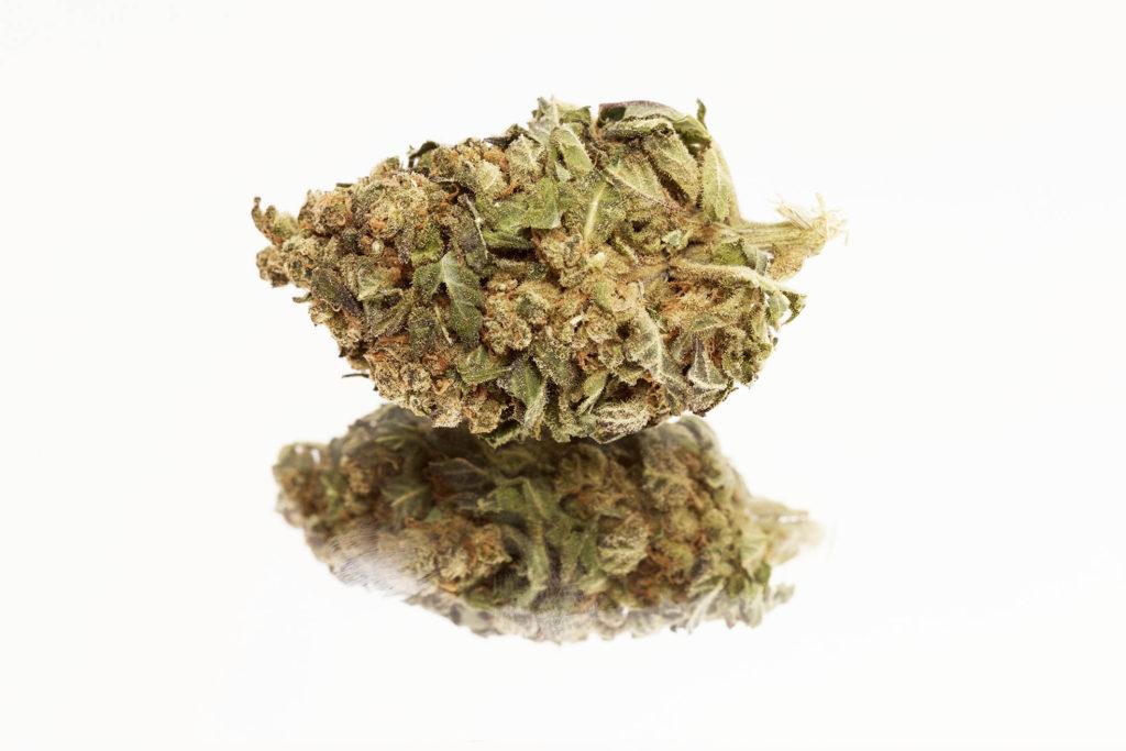 Green Acid – NOVINKA 10% CBD
